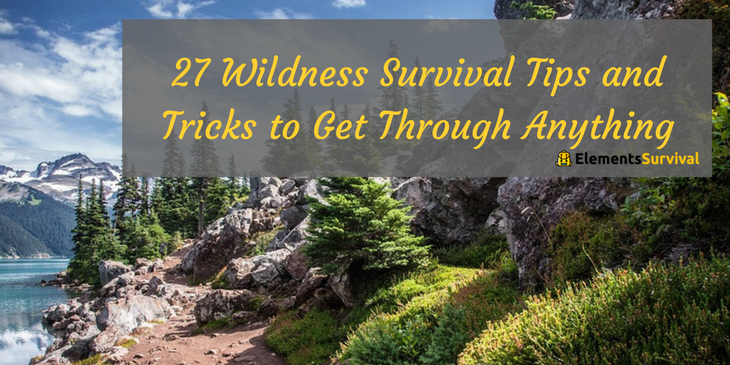 27 Wildness Survival Tips and Tricks to Get Through Anything